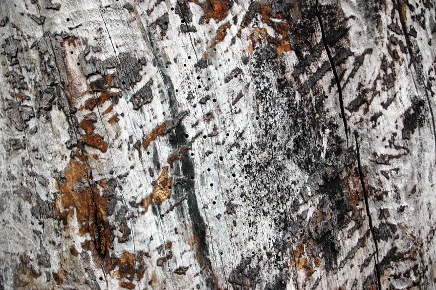 Oberflächen (4)